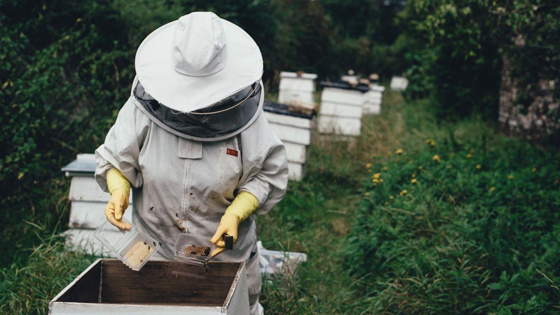 Slovenský zväz včelárov - pozvánka na oslavu