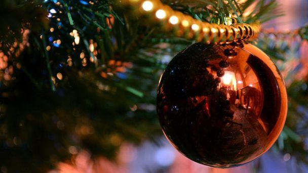 Oznam - Zber vianočných stromčekov